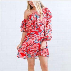 Show Me Your Mumu Watson Mini Dress